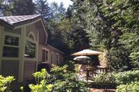 Garden Hideaway-Darling Getaway on Bainbridge photo