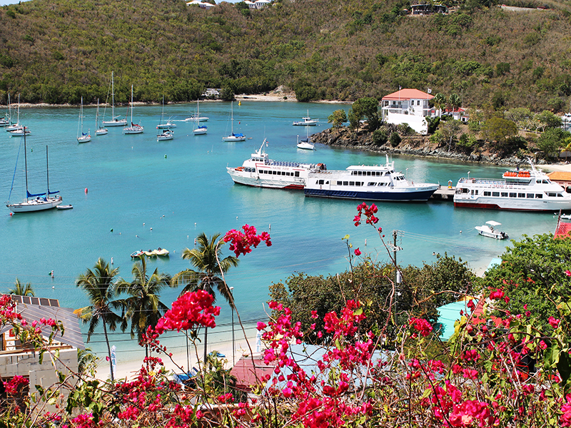 The Cottage Studio Apartment Vacation Condo Rental At Battery Hill In Cruz  Bay St John USVI