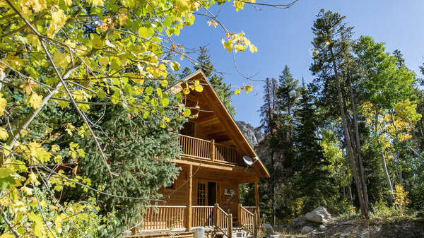 Forest Creek Cabin photo